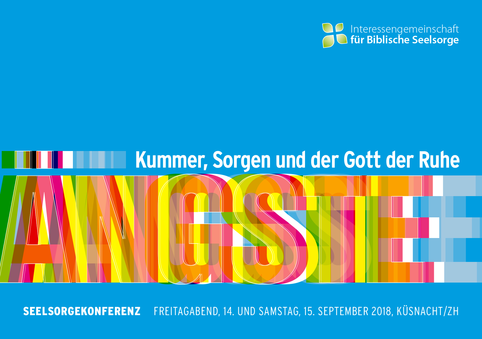 Flyer IfBS Konferenz 2018 Cover